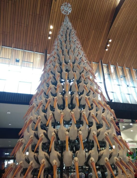 A Christmas Tree made of Pelicans