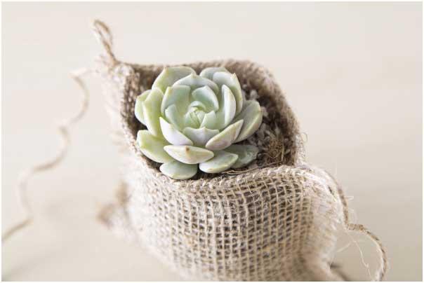 burlap-planting-bags