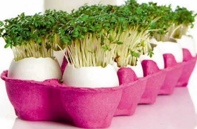 DIY-Garden-Crafts