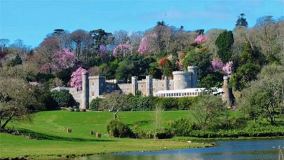 Caerhays-Castle-and-Gardens